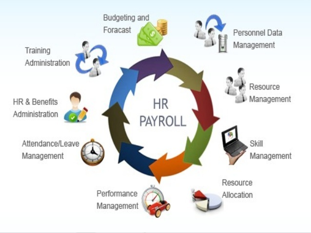 Employee HR, Attendance & Payroll Software in Chittagong